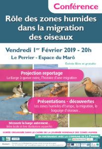 1er février : Soirée sur la migration dans les zones humides